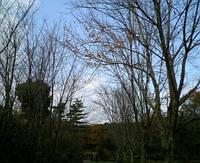 2006121605