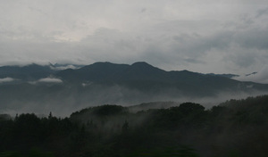 200892207