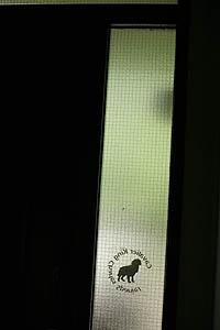 2006526001